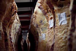 Cambios en el peso mínimo de la faena de bovinos hembras