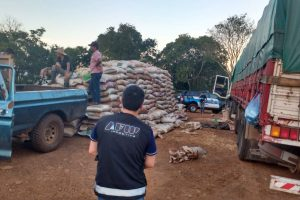 La Afip desarticuló millonaria maniobra de evasión sojera con ramificaciones en Misiones