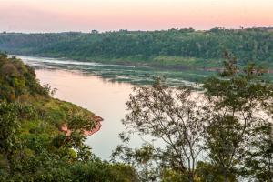 Viajes saludables en la Selva Misionera, la nueva tendencia del turismo experiencial para disfrutar una de las maravillas del mundo