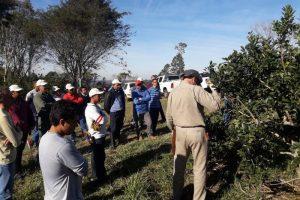 El RENATRE brindará una capacitación sobre Yerba Mate en San Vicente y Montecarlo