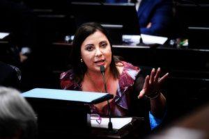 Senadora misionera plantea inconstitucionalidad de Decretos de rebaja del IVA y compensación de Ganancias