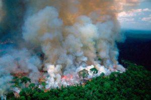 Alarma por incendios y deforestación récord en Amazonas con Bolsonaro