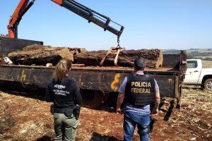 La ecología según Bolsonaro: se incendia el Amazonas y desmontan el Parque Nacional do Iguaçu