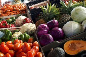 El Gobierno provincial impulsa una red de mercados concentradores