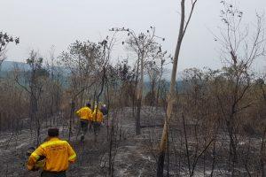 Fueron controlados los focos de incendio en Iguazú y Parque Provincial Salto Encantado