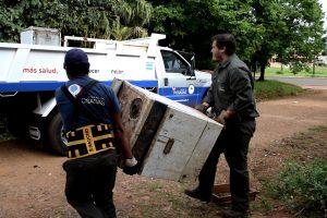 Lucha contra el dengue: en Posadas refuerzan operativos de descacharrado y concientización en los barrios