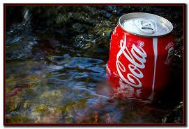 Coca-Cola «imita»a Misiones y valoriza económicamente cada vez más el uso del agua
