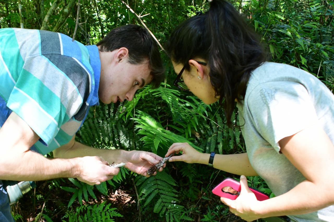 Yacyretá impulsa jornadas de educación ambiental en Curindy