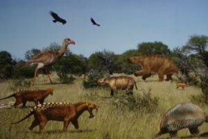 Recuperan numerosos fósiles de tres millones de años en Miramar