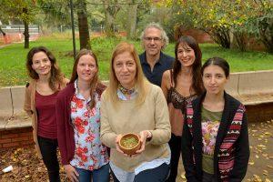 Logran un extracto de yerba mate para jugos antioxidantes