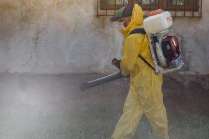 Confirmaron en Misiones que llegaron a 75 los casos de dengue