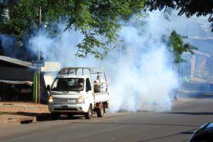 Confirmaron casos de dengue serotipo DEN 1 en tres localidades de Misiones