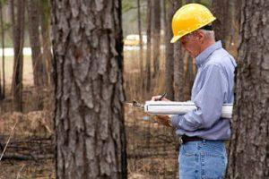 Solicitan que se respete la formación profesional para la designación de funcionarios en el ámbito forestal
