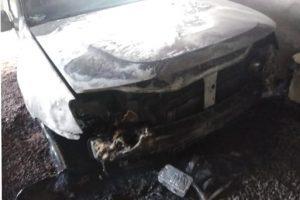 Vialey repudió el atentado contra el guardaparque Bondar