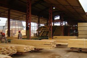El Gobierno provincial autoriza a operar a la foresto industria